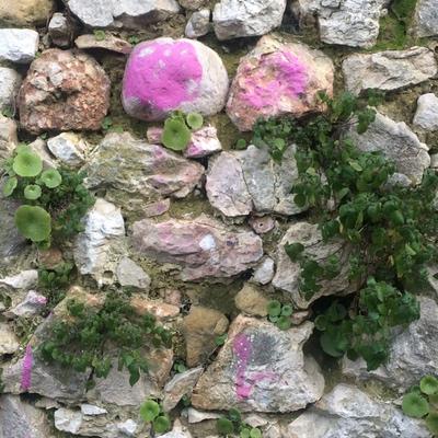 Vence Wall Art